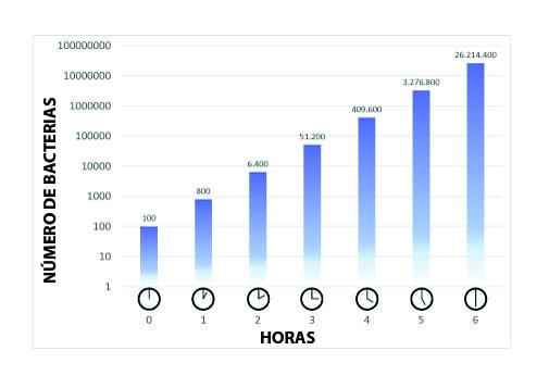 numero de bacterias horas